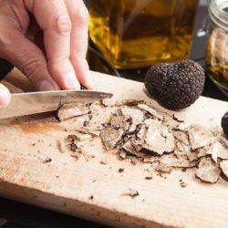 truffe-perigord-St-SEVER-1024x683